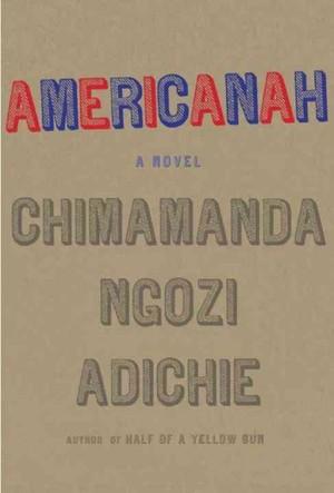 Americanah Essay Format - image 10